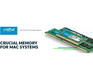 Crucial 8Gb (1X8Gb) Ddr3 1866 Cl13 Ecc Udimm For Mac Ct8G3W186Dm