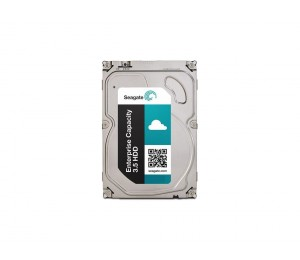 Enterprise Capacity 3.5 2TB SATA 6Gb/ s 7200RPM 128Mb Cache ST2000NM0125