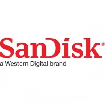 SANDISK SDHC 64GB Card SDSDB-064G-B35
